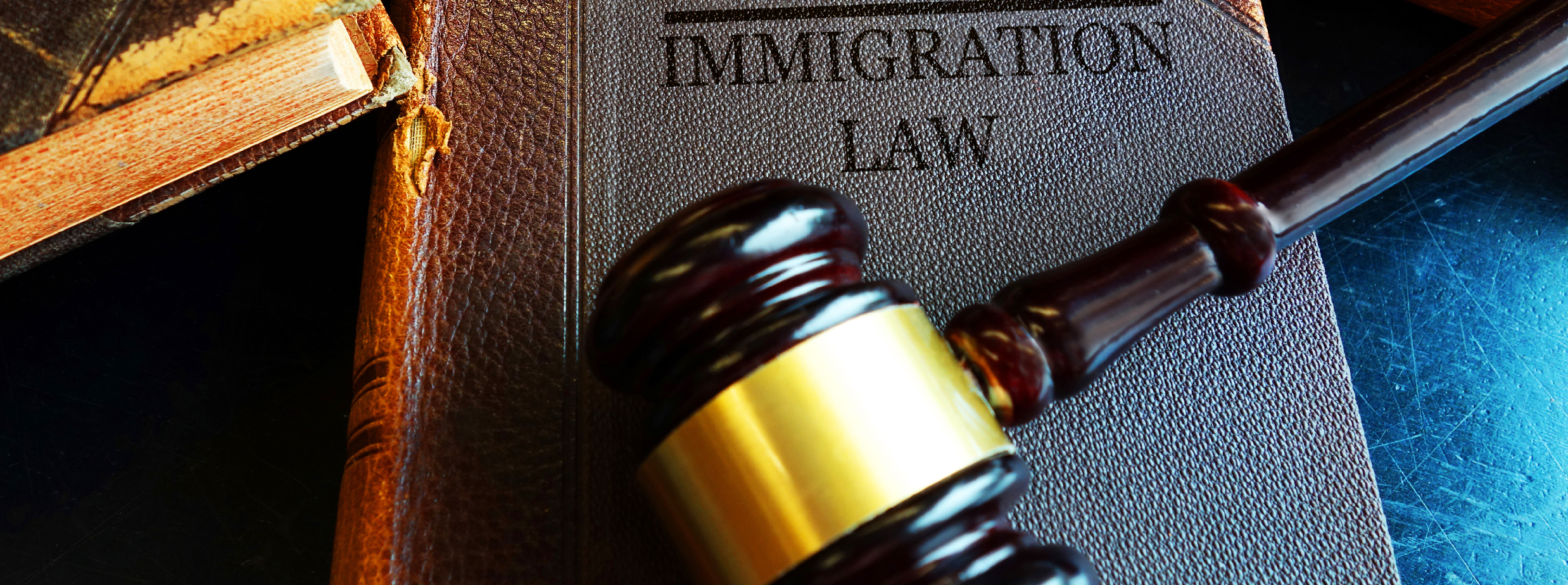 Immigration lawyer for Federal Litigation