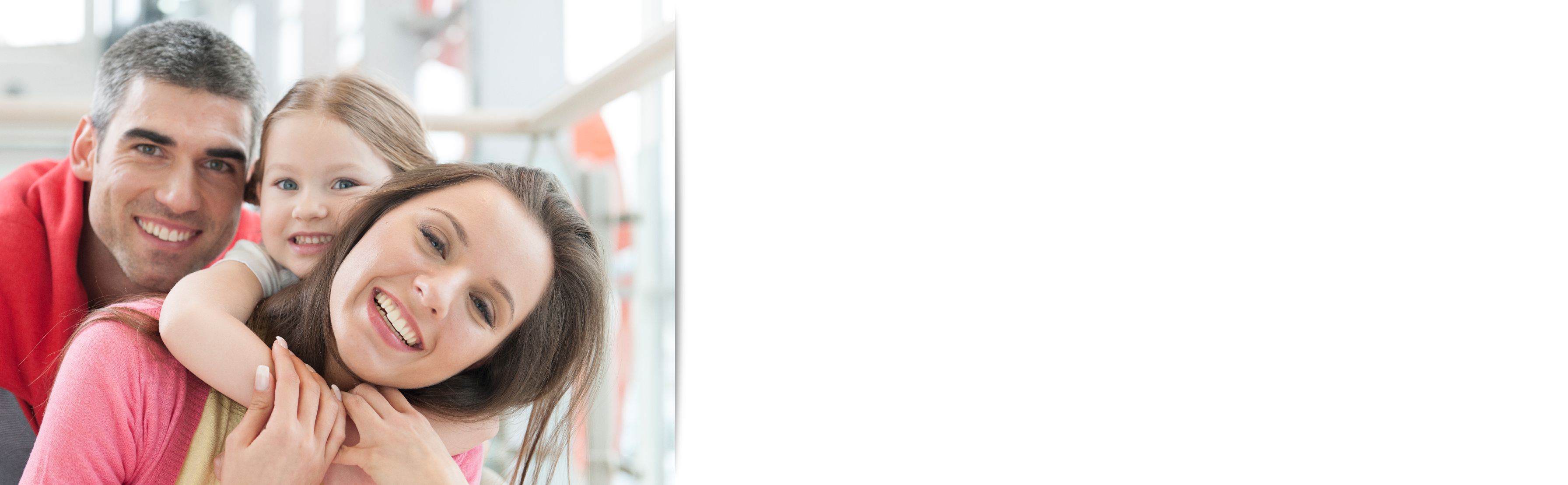 Family Petitions ES